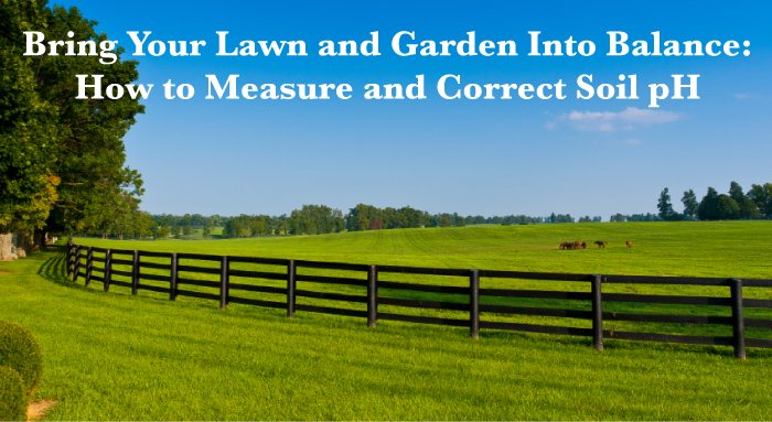 How to Measure and Correct Soil pH