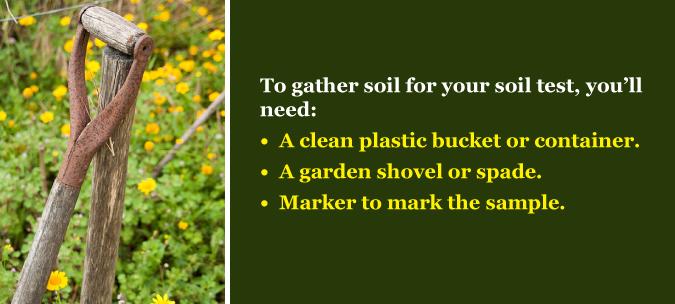 lime gardening soil test
