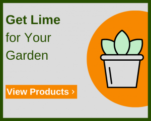 Using Limestone for Gardens & Soil | How Much to Use on Your
