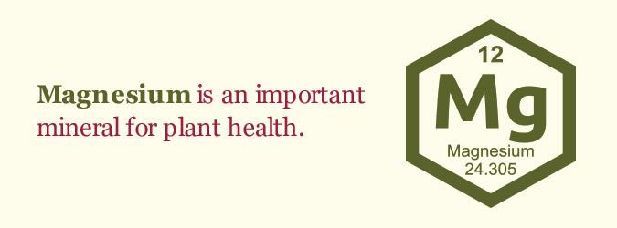 Magnesium for plant health