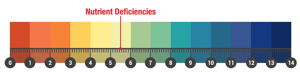 liming nutrient deficiencies