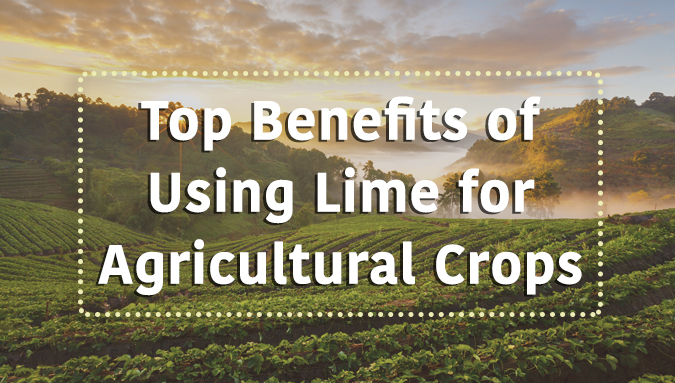 Ag lime for crops