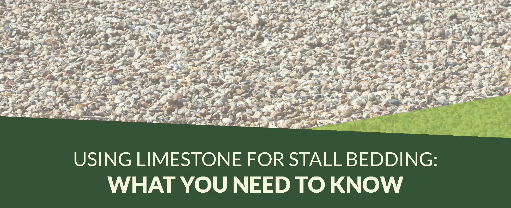 Comfort Level Greatly Depends On Stall Floor Construction And Covering Today Many Keepers Use Limestone For Livestock Bedding